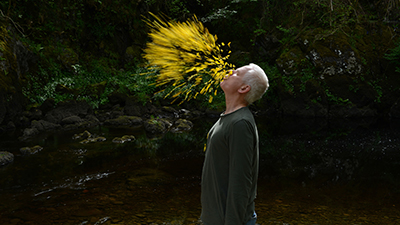 Leaning Into the Wind: Andy Goldsworthy
