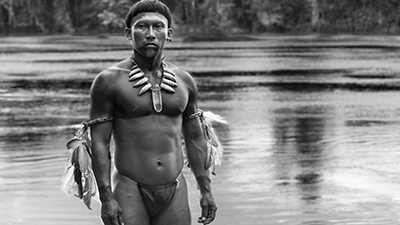 Embrace Of The Serpent - Oscilloscope 10